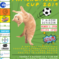 'Pamingming Cup 2019' aims to raise funds for stray kitties